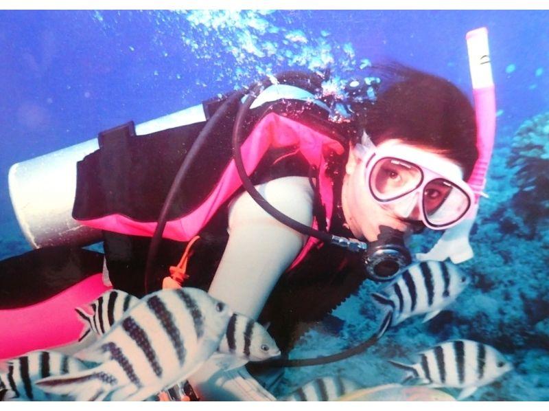 【静岡・西伊豆】安心・安全なマンツーマン指導!体験ダイビング(2回コース)の紹介画像
