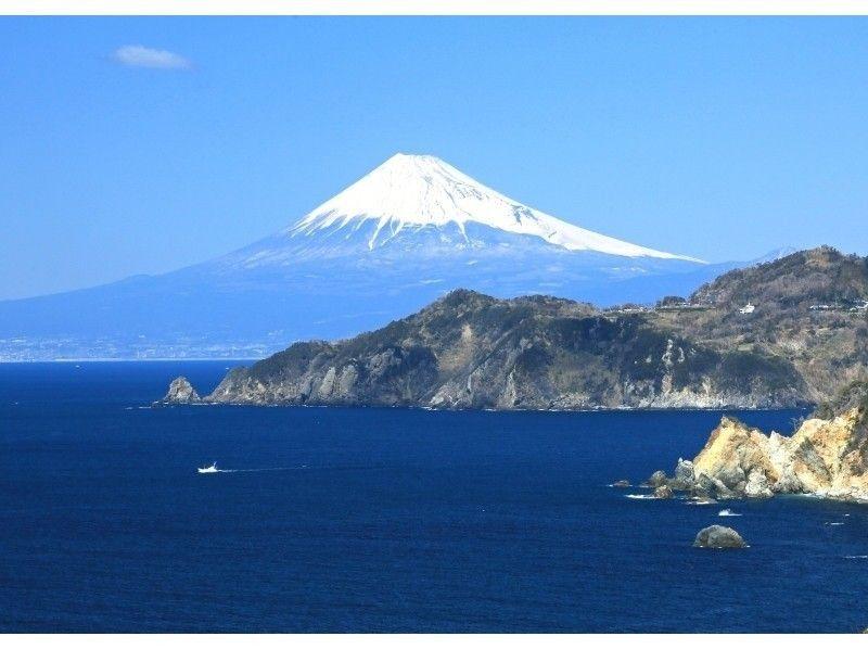 【静岡・西伊豆】ガイド付き・2ボートダイビング人気プラン!の紹介画像