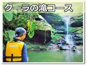 motti(もっち)西表島トレッキングエコツアーの画像