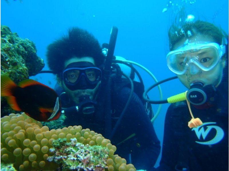 【沖縄・石垣島】体験ダイビング☆1日コースの紹介画像