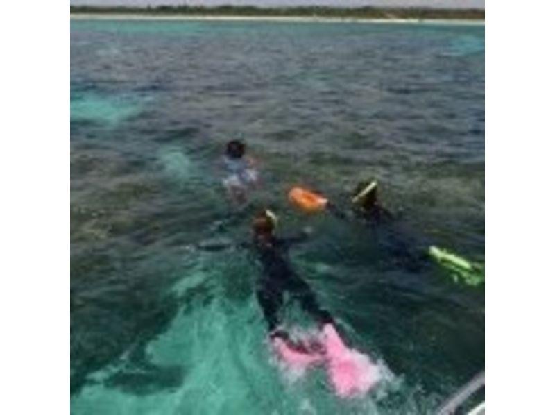 【沖縄・石垣島】美しいサンゴ礁の海!石垣島白保シュノーケルツアーの紹介画像