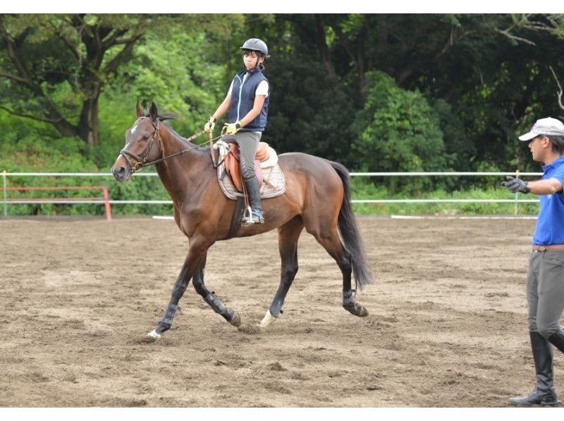 【茨城・守谷】乗馬をより楽しみたい方に!体験乗馬(5回コース)の紹介画像
