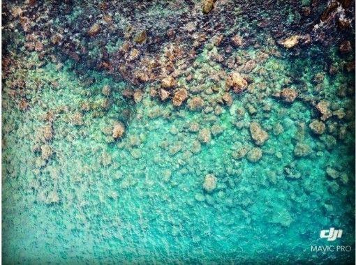黄金崎の青い海で子供も大人も一緒に楽しめるシュノーケリング♪ スタッフと一緒に2時間(写真無料プレゼント)6歳~の紹介画像