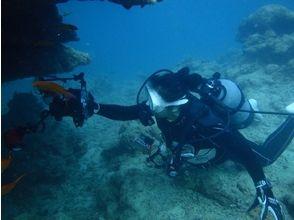 ダイビングショップ皐月(Diving Shop SATSUKI)の画像