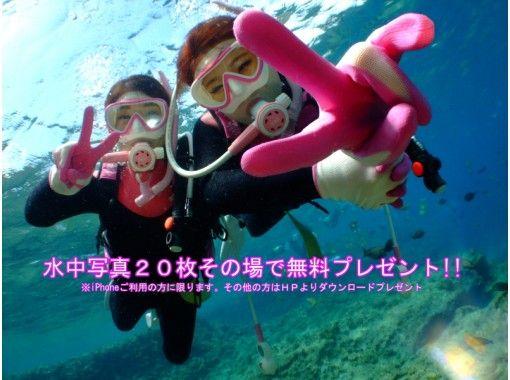 「映える」水中写真・餌付け・無料!!【沖縄・青の洞窟ダイビング】パラセール・ホエールセットも受付け中