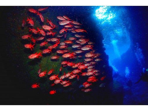 【沖縄・恩納村】青の世界を体感しよう!大人気!青の洞窟へボートで楽々♪体験ダイビングの紹介画像