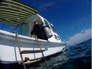 沖縄のダイビングNEO(ネオ)の画像