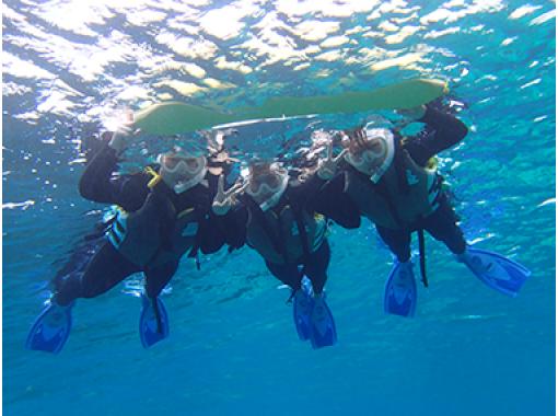 【沖縄・石垣島】幻の島でシュノーケリング体験(Aコース:半日コース)