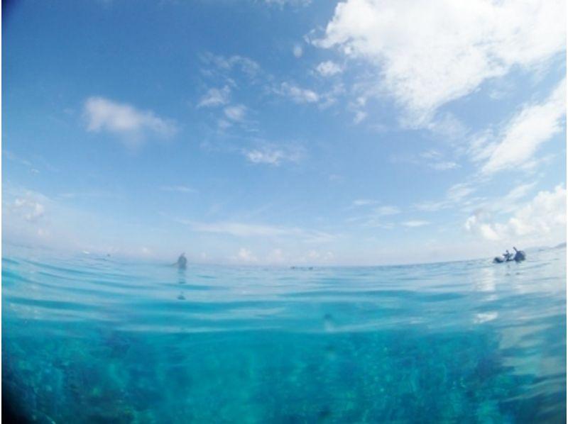 ゆっくりカラフルな海を楽しもう!さんご礁体験ダイビング1DIVEコース 半日(AM or PM)の紹介画像