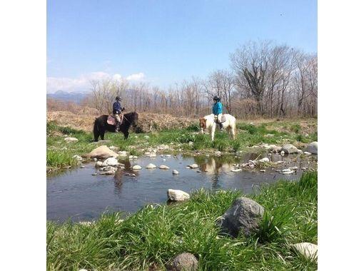 【群馬・利根川】利根川パカパカ散歩(外乗)【乗馬】の紹介画像