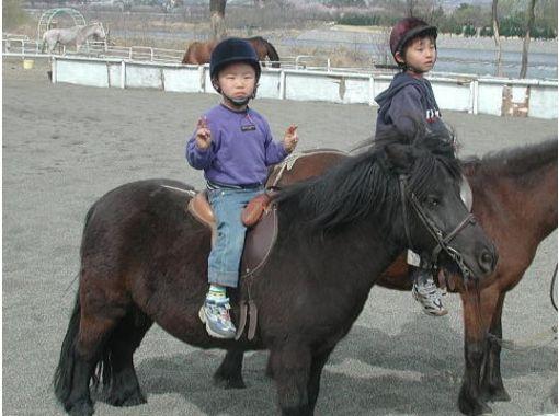 【群馬・利根川】ポニークラブビジター【乗馬】
