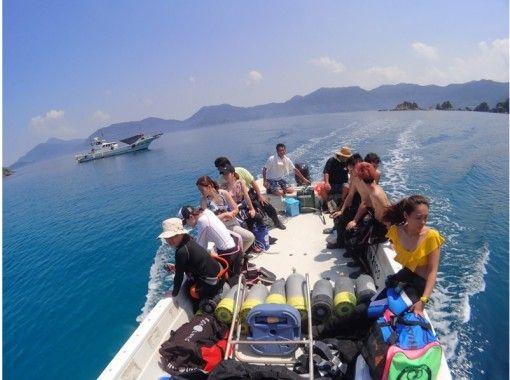 【鹿児島・坊津】透明なブルーの海!秋目湾ボートダイビングの紹介画像