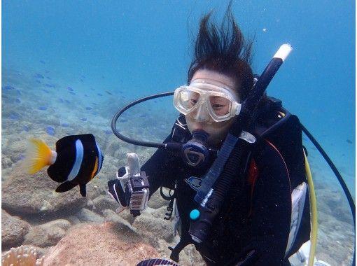 [Kagoshima Sakurajima] equipment rental set included! Divingの紹介画像