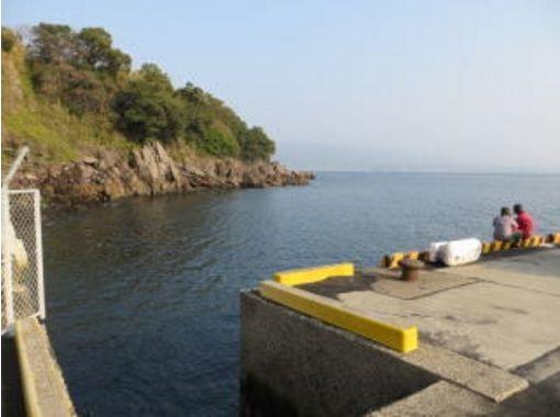【鹿児島・桜島】2ビーチファンダイビングの紹介画像