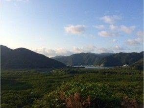 ★貸切案内★【鹿児島・奄美大島】SUPでマングローブのんびりツアーの魅力の説明画像