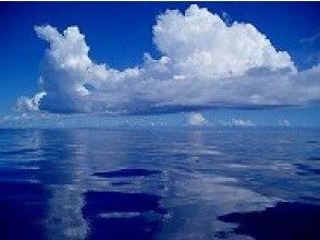 プランの魅力 夏の海 の画像