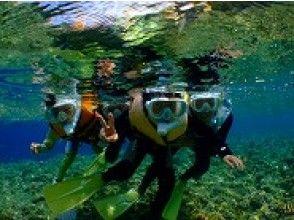 プランの魅力 Snorkel together の画像