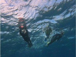 【沖縄・宮古島】気軽にトライ可!ボートスノーケリングツアー ※コースにより価格が異なりますの魅力の説明画像