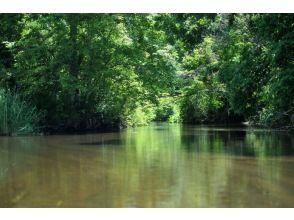 【北海道・美々川】緑が生い茂る千歳美々川!カヌーでジャングルツーリングの魅力の説明画像