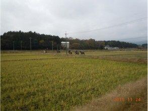 プランの魅力 Kaashi ในหลักสูตรแม่น้ำ の画像