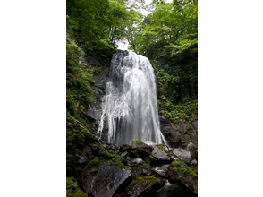 【福島・裏磐梯】小野川湖に注ぐ渓谷沿いをトレッキング!小野川不動滝探勝路の魅力の説明画像