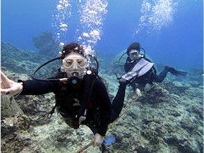 【沖縄・石垣島】初心者歓迎!石垣の海を楽しもう!体験ダイビングの魅力の説明画像