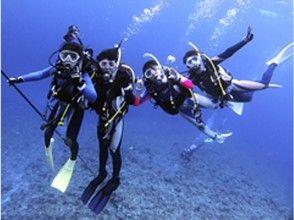 【沖縄・石垣島】世界に誇る石垣の海でダイバーデビュー!PADIダイビングライセンス取得コースの魅力の説明画像