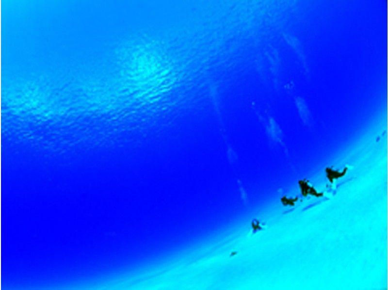 プランの魅力 石垣北部の海だからこそ、この透明感!石垣ブルーを体験 の画像