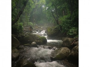 [北海道・ニセコ]ニセコ近郊の山岳渓流を攻める!マウンテンストリームフィッシングガイドの魅力の説明画像