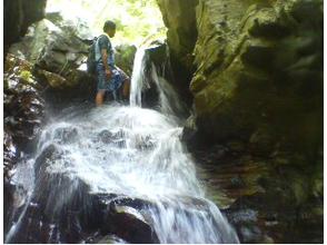 【沖縄・名護エリア】新感覚の川遊び体験!沢登り&キャニオニングコースの魅力の説明画像