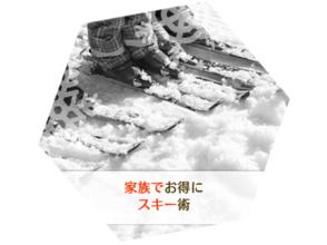 【山梨・富士山】富士山で滑る!スキーレッスンの魅力の説明画像