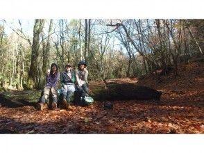 青木ヶ原樹海トレイルウォーク『躍動の森 富士山原生林を歩く』の魅力の説明画像