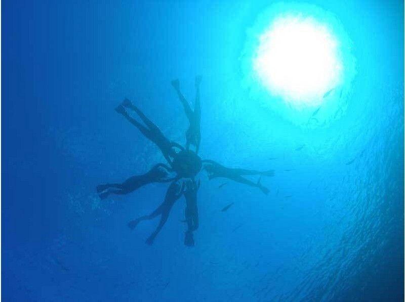 プランの魅力 青の洞窟の海中写真。光と青が綺麗 の画像