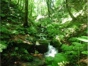 プランの魅力 The murmuring of the river is also comfortable の画像