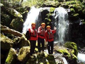 プランの魅力 Giboshi Waterfall の画像