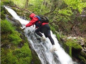 プランの魅力 Mini waterfall の画像