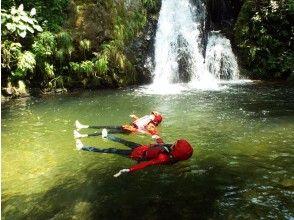 プランの魅力 Take a break at Ryujin Falls の画像