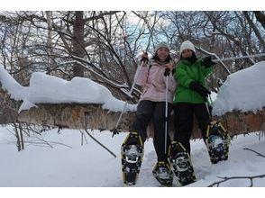 【群馬・吾妻】スノーシューで歩く!雪の森探検3時間コースの魅力の説明画像