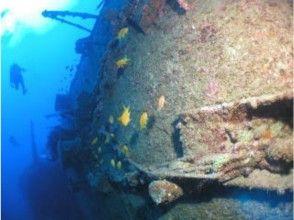 【沖縄・国頭】沈没船ツアーもあり!ファンダイビング今帰仁ボートエリア<2ボートダイビング>の魅力の説明画像