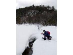 【滋賀・山門湿原】自然豊かな湿原を散策!スノ―シュートレッキング体験(半日コース)の魅力の説明画像