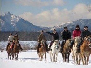 プランの魅力 冬の馬場雪原 の画像
