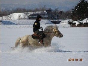 プランの魅力 新雪乗馬! の画像