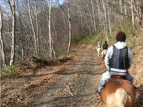 [Hokkaido Eniwa] trying to enjoy nature in Hokkaido in the riding! Charm of description image of horse trekking experience [2 hours]