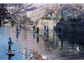 【神奈川・横浜・川崎】水上さんぽに挑戦しよう!SUPスクール (初心者講習会)!の魅力の説明画像