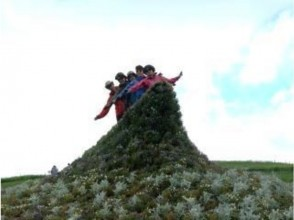【北海道・旭川】北海道の最高峰を歩こう!大雪山(黒岳~旭岳縦走)日帰りトレッキング!の魅力の説明画像