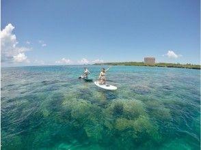 プランの魅力 Coral reef ☆ の画像