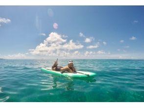 【Okinawa · Miyakojima】 WEB limited price! Popularity No. 1! SUP + Sea turtle snorkel Enjoy both Half day Plan's attraction picture