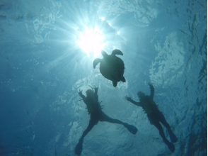 【沖縄・宮古島】2016人気NO.1!SUP + ウミガメシュノーケル 両方ゆっくり楽しむ半日プランの魅力の説明画像