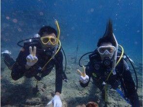 プランの魅力 体验潜水课程 の画像