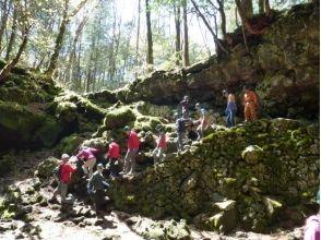 プランの魅力 樹観光客は絶対に足踏み入れない天然洞窟へご案内。 の画像